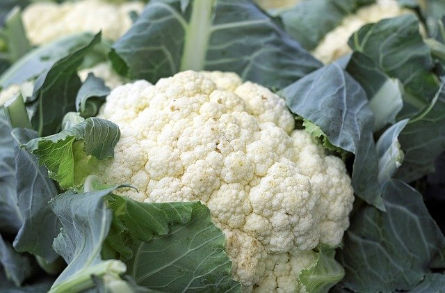 Cauliflower Benefits and Side Effects