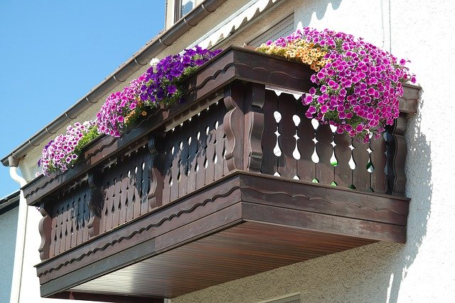 How to plant a garden on your balcony the best way in 4 steps explained